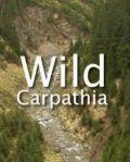 Wild Carpathia film documentar