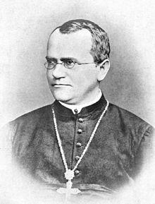 Gregor Mendel Monk.jpg