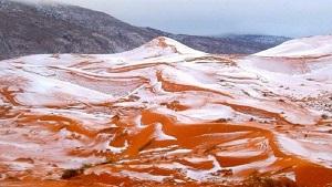 nins sahara