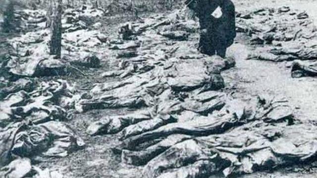Istoric despre masacrul de la Fântâna Alba